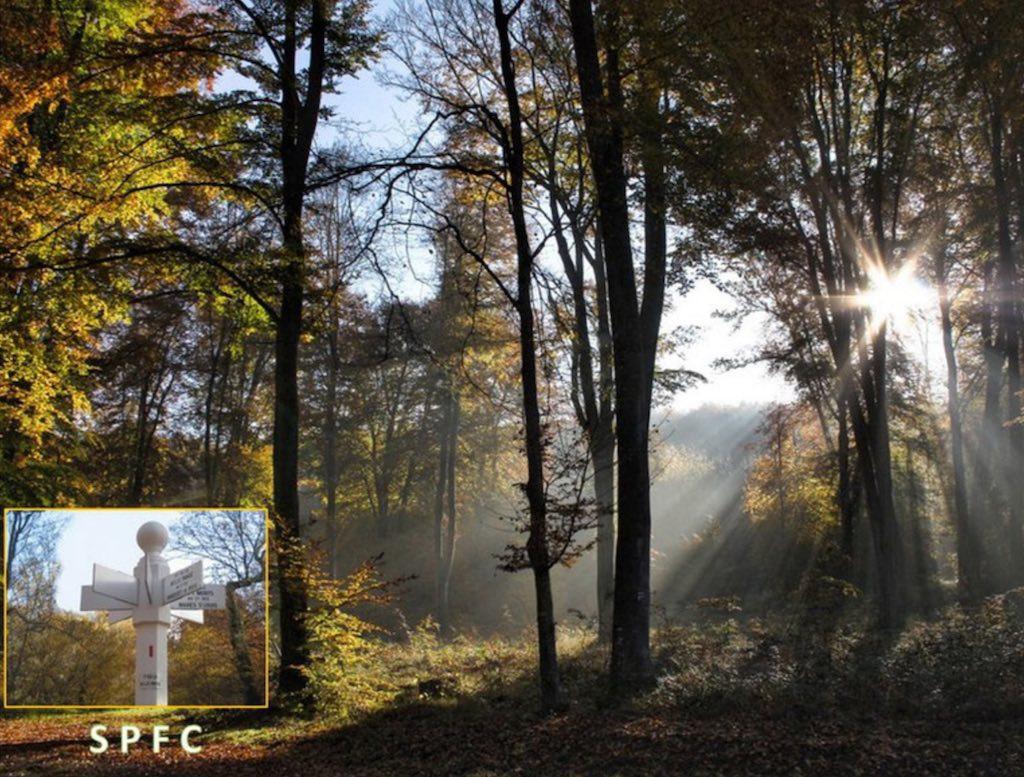 Sauvegarde du Patrimoine des Forêts du Compiégnois 2017